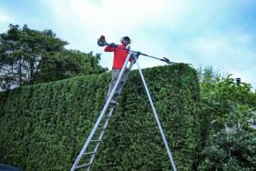 Őszi kertgondozás, sövénynyírás