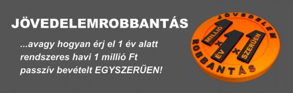 JÖVEDELEMROBBANTÁS!