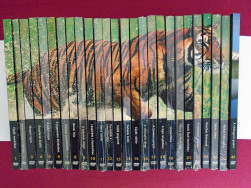 Natural Killers-Ragadozók testközelben DVD 26db