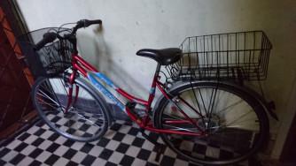 Gepida Alboin 100 Lite Flite női 28-s városi bicikli eladó 29990 Ft