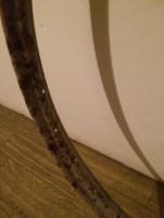 Kep vagy tokor keret: antik nagy vas kerek